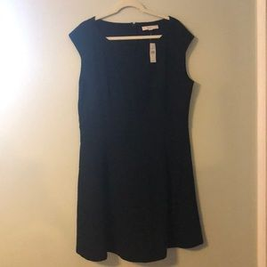 NWT Loft Fit and Flair Dress